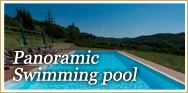 Swimming pool of Podere Chiaromonte farmhouse